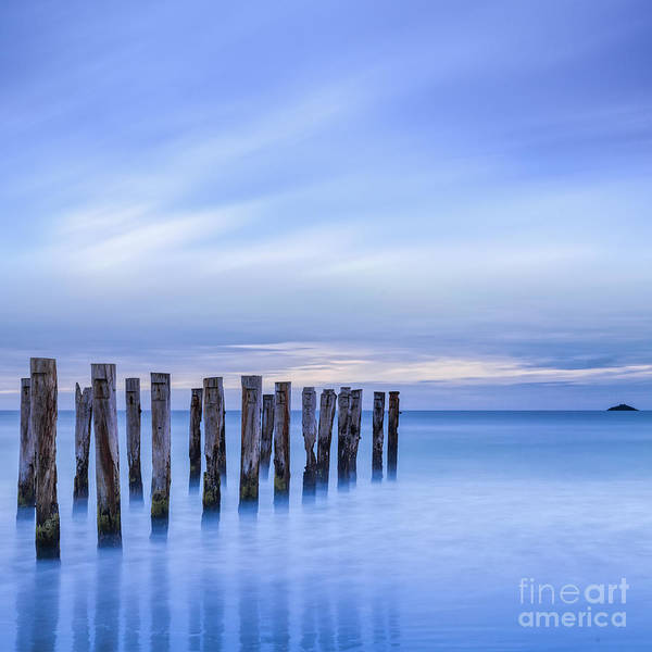 Old Jetty Pilings Dunedin New Zealand Art Print