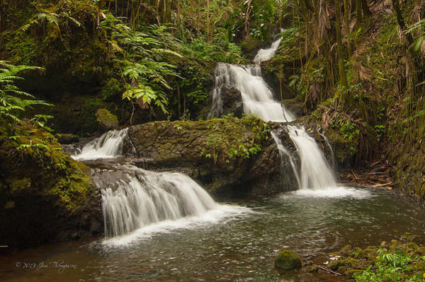Photograph - Onomea Falls by Jim Thompson