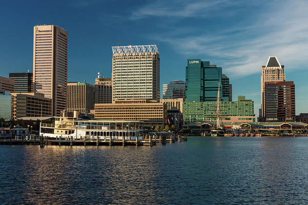 Fish Tank Photograph - Panoramic View Of Baltimore Inner by Panoramic Images