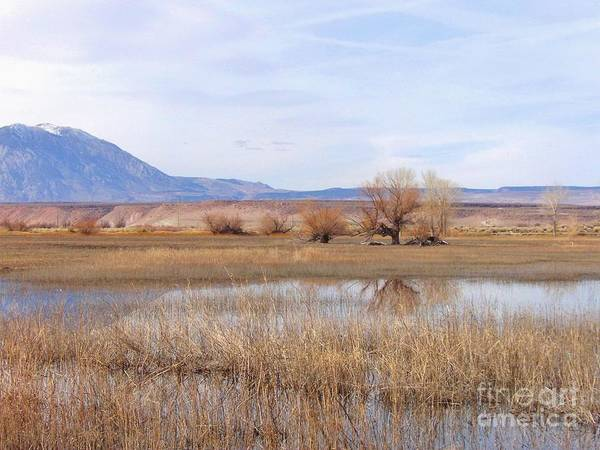 Bishop Hill Photograph - Peace In The Valley by Marilyn Diaz