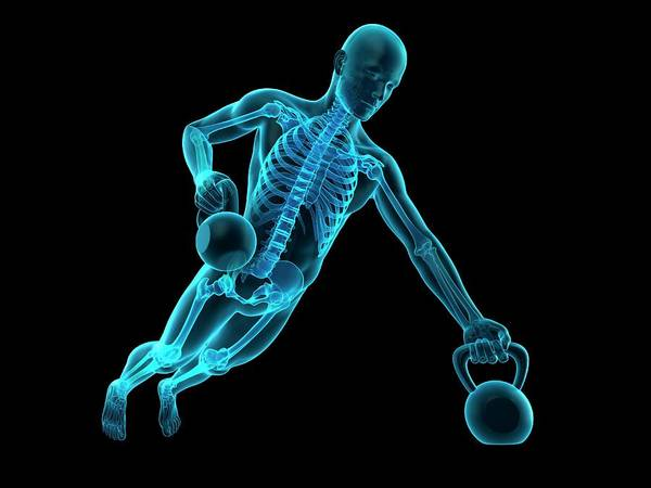 Anatomical Position Wall Art - Photograph - Person Lifting Kettle Bell by Sebastian Kaulitzki/science Photo Library