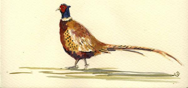 Hunt Painting - Pheasant by Juan  Bosco