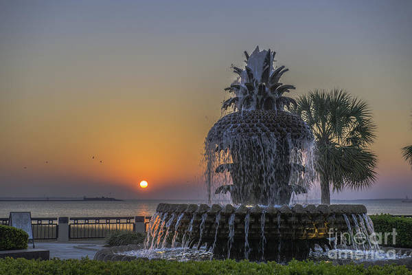 Photograph - Waterfront Park Glowing by Dale Powell