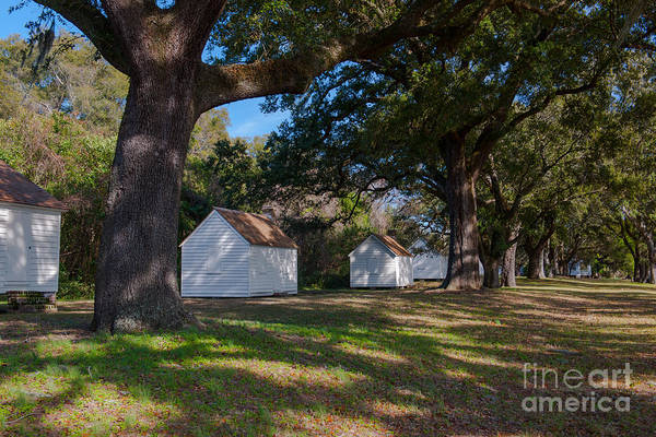 Photograph - Plantation Cabins by Dale Powell