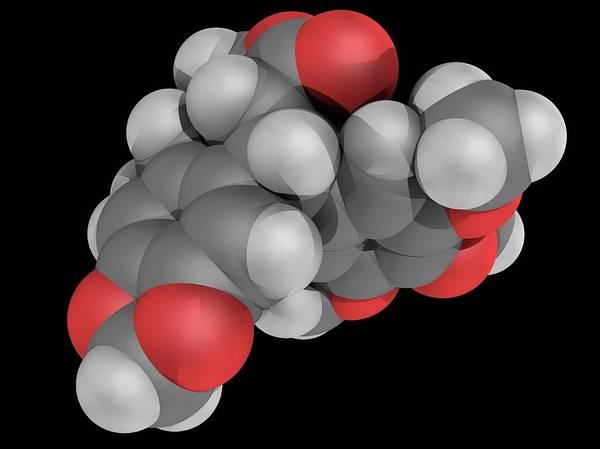 Wall Art - Photograph - Podofillotoxin Molecule by Laguna Design/science Photo Library