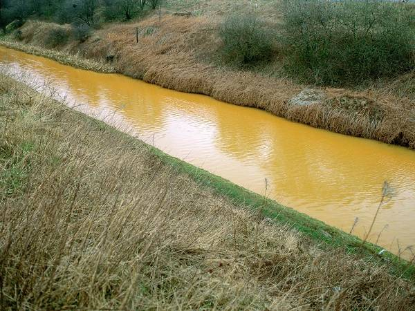 Wall Art - Photograph - Polluted Canal by Robert Brook/science Photo Library