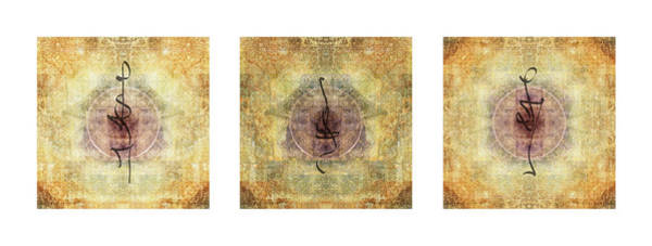 Wall Art - Photograph - Prayer Flag Triptych  by Carol Leigh