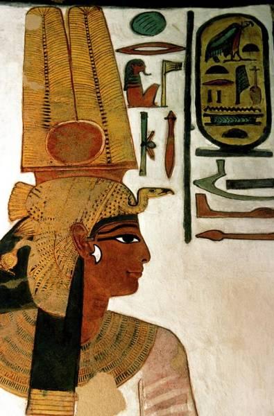 Wall Art - Photograph - Queen Nefertari by Patrick Landmann/science Photo Library