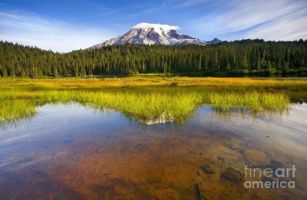 Mt Rainier Photograph - Rainier Capped by Mike  Dawson