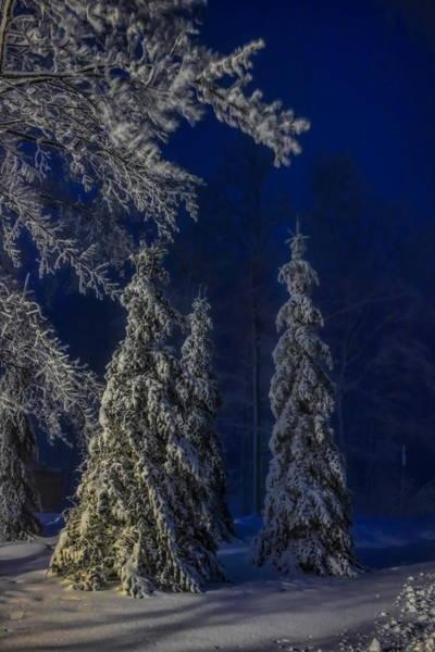 Photograph - Rib Mountain State Park Snow by Dale Kauzlaric