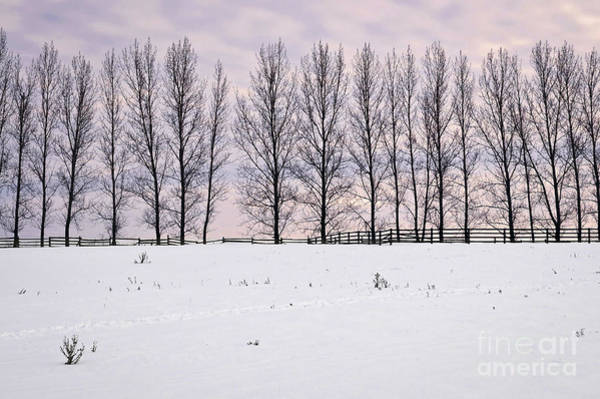Framing Photograph - Rural Winter Landscape by Elena Elisseeva