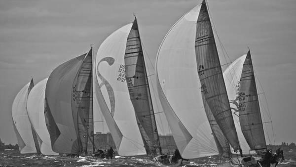 Photograph - Sail Sails Sailors by Steven Lapkin
