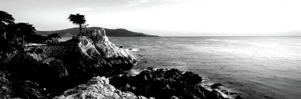 Monterey Cypress Photograph - Silhouette Of Lone Cypress Tree by Panoramic Images
