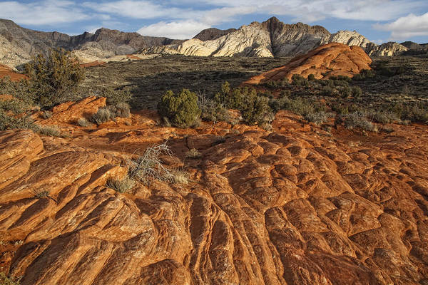 George Canyon Photograph - Snow Canyon State Park Utah by Douglas Pulsipher