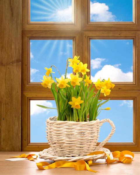Wicker Photograph - Spring Window by Amanda Elwell