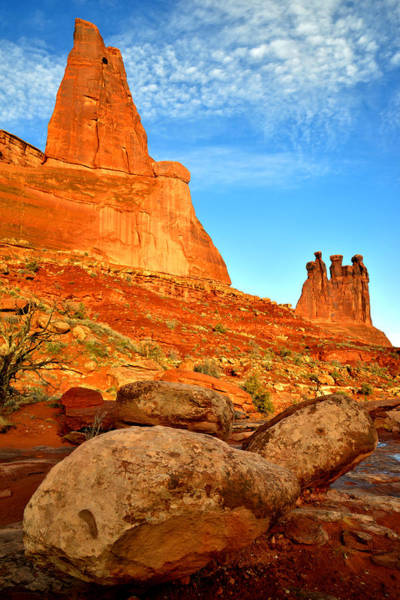 Photograph - The Three Gossips by Ray Mathis