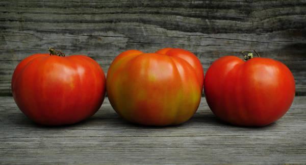 Wall Art - Photograph - 3 Tomatoes by Luke Moore