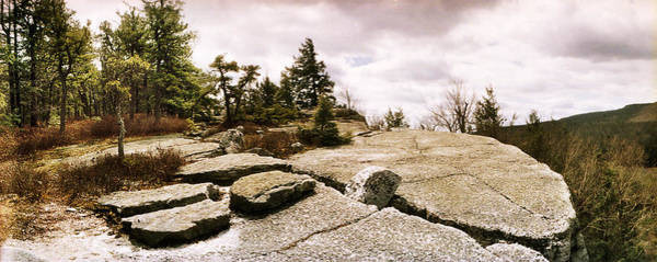 Catskill Photograph - Trees And Boulders Along The Gertrudes by Panoramic Images