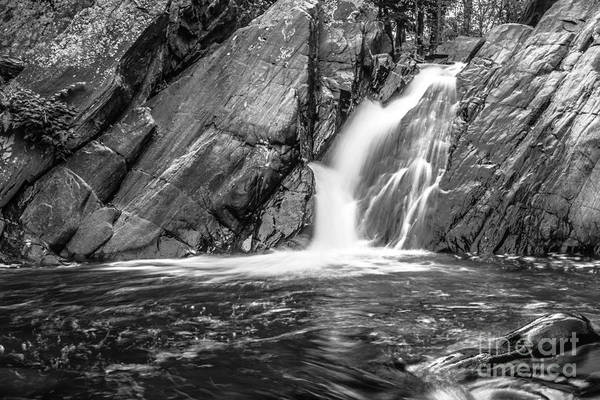 Photograph - True's Brook Gorge Water Fall by Edward Fielding