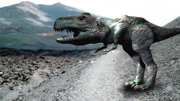 Palaeozoology Wall Art - Photograph - Tyrannosaurus Rex by Christian Darkin