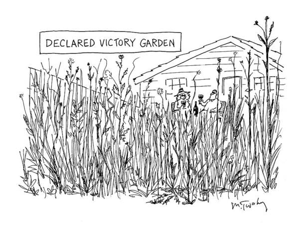 Grass Drawing - Declared Victory Garden by Mike Twohy