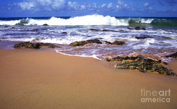 Photograph - Vieques Beach by Thomas R Fletcher