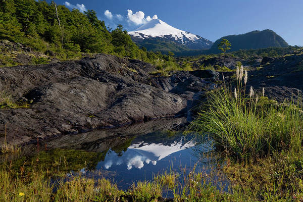 Wall Art - Photograph - Villarrica National Park, Chile by Scott T. Smith