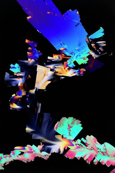 Wall Art - Photograph - Vitamin B6 Crystals by Sidney Moulds/science Photo Library