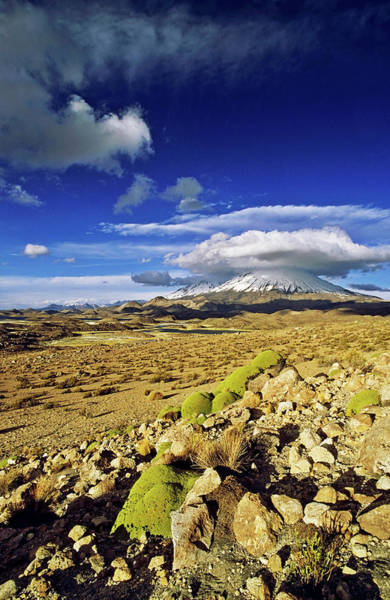 Wall Art - Photograph - Volcano Parinacota (6342m by Martin Zwick