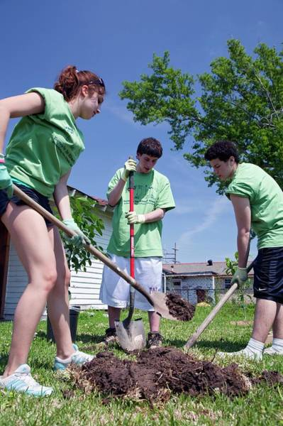 Non Profit Photograph - Volunteers Planting Trees by Jim West
