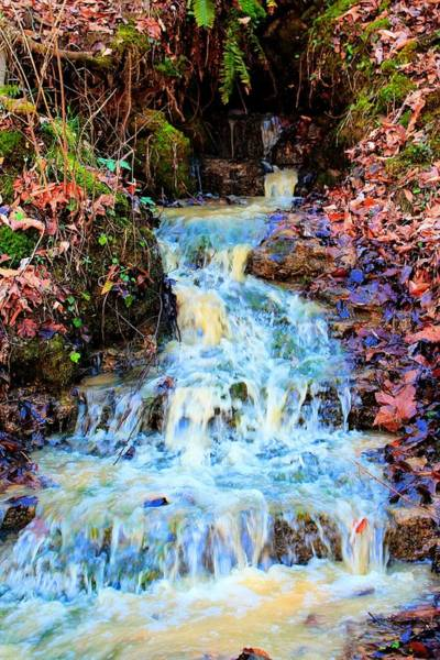 Photograph - Waterfall by Rebecca Frank