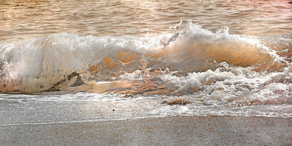 Focus Wall Art - Photograph - Wave by Betsy Knapp