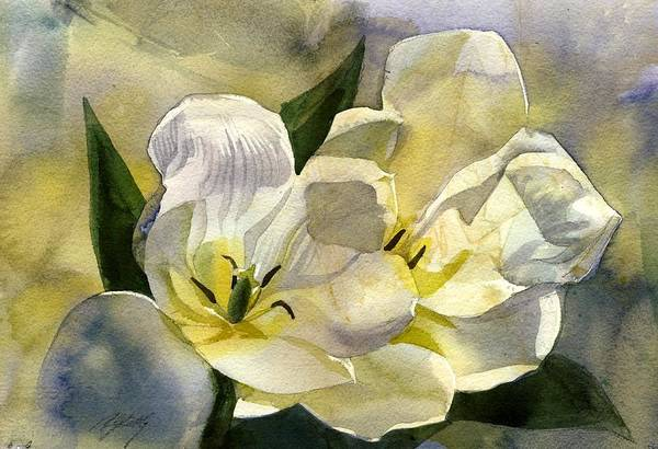 Painting -  Flower-white Tulips by Alfred Ng