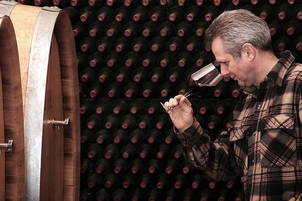 Olfactory Bulb Photograph - Wine Quality Inspection by Mauro Fermariello/science Photo Library