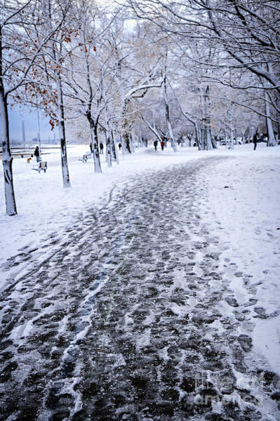 Strolling Photograph - Winter Park by Elena Elisseeva