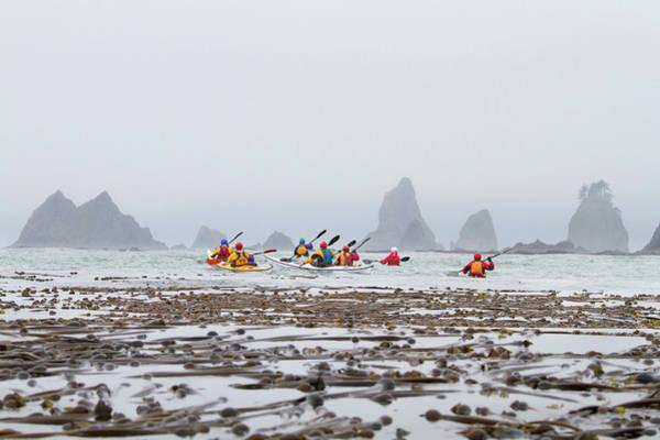 Kelp Photograph - Usa, Washington State by Gary Luhm