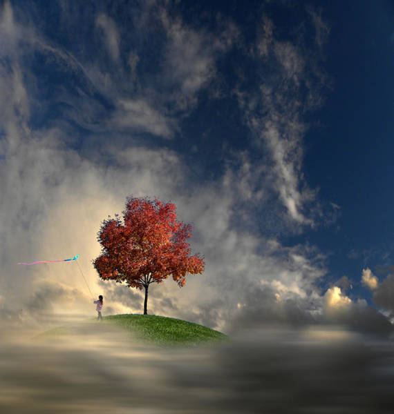 Kite Photograph - 3170 by Peter Holme III