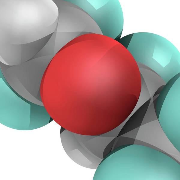 Wall Art - Photograph - Molecular Model by Laguna Design/science Photo Library