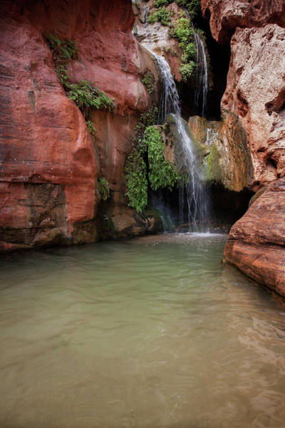 Chasm Photograph - Usa, Arizona, Grand Canyon National Park by Jaynes Gallery