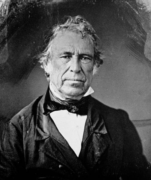 Photograph - Zachary Taylor (1784-1850) by Granger