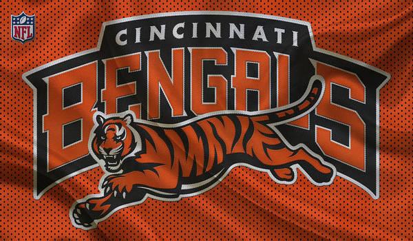 Bengal Photograph - Cincinnati Bengals by Joe Hamilton