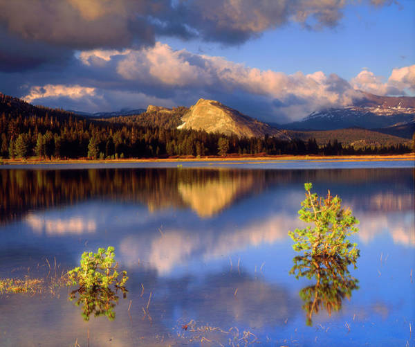 Dome Peak Photograph - Usa, California, Yosemite National Park by Jaynes Gallery