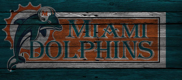 Dolphin Photograph - Miami Dolphins by Joe Hamilton