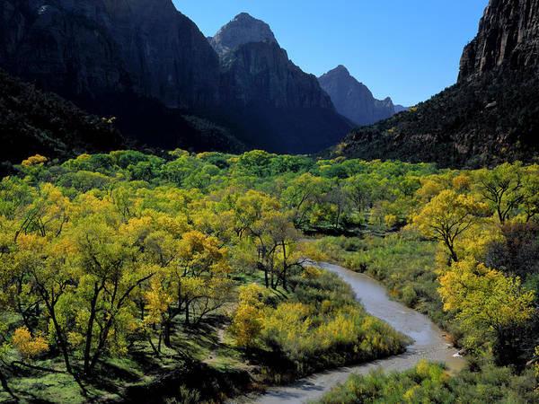 Rufous Photograph - Zion National Park, Utah by Scott T. Smith