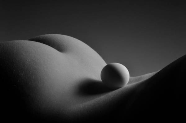 Photograph - 3604 Bw Egg Scape by Chris Maher