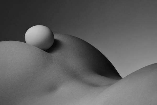Photograph - 3632 Bw Egg And Nude Womans Back by Chris Maher