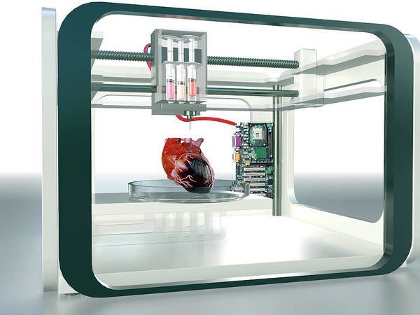 3d Printed Heart Art Print by Christian Darkin