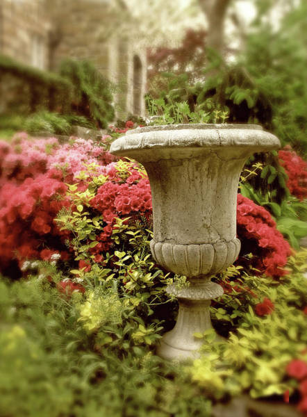 Urn Photograph - Azalea Garden by Jessica Jenney