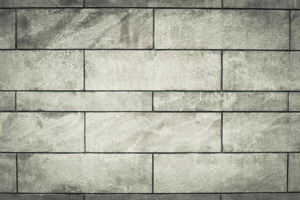 Cement Photograph - Brick Wall  by Tom Gowanlock
