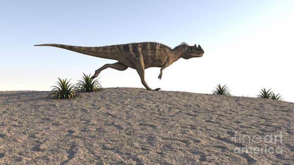 Digital Art - Ceratosaurus Running Across A Barren by Kostyantyn Ivanyshen